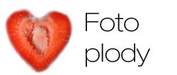 Ikona foto_plody